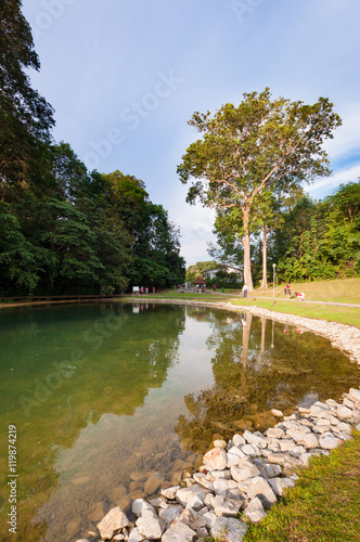 Photo  Part of reservoir in MacRitchie park