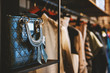 canvas print picture - Handbags and clothes in a fashion store