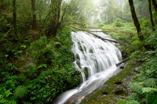 Deep Forest Waterfall In Kew Mae Pan, Larn Sadej Waterfall In Hill Evergreen Forest Of Doi Inthanon National Park, Chom Thong, Chiang Mai, North Of Thailand
