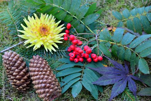 Herbst Dekoration Garten Buy This Stock Photo And Explore Similar