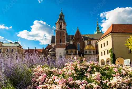 Fototapeta Wawel cathedral in Krakow, Poland obraz