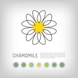 Chamomile thin line art icon, isolated daisy logo, abstract flower design. Simple floral. Modern minimal design flower, Vector illustration