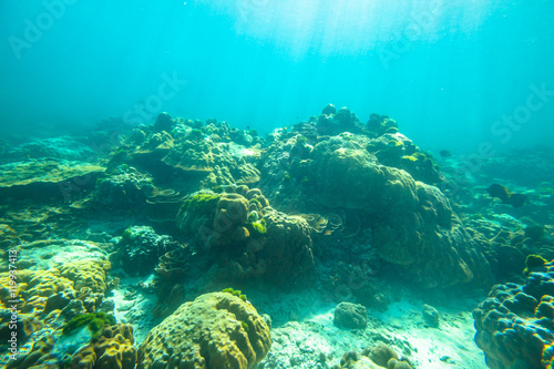 Photo Stands Turquoise Typical seabed of Phuket, Racha Noi in Thailand. Landscape for background.