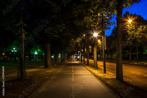 Fotografie, Obraz  Rue parisienne la nuit