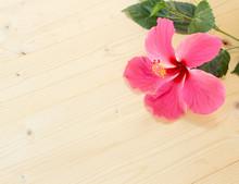 Pink Hibiscus Flower On A Wooden Floor.