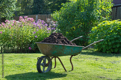 Fotografía  Wheelbarrow full of compost on green lawn in garden.