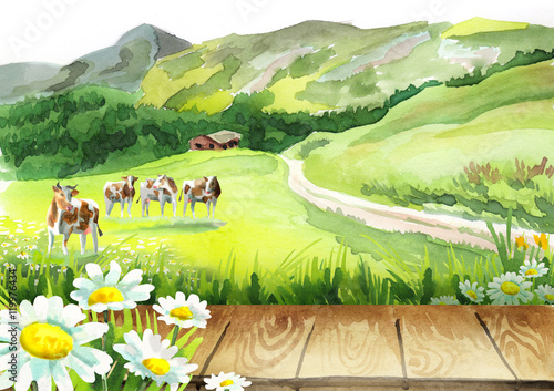 Poster Geel Cows in a meadow and a board