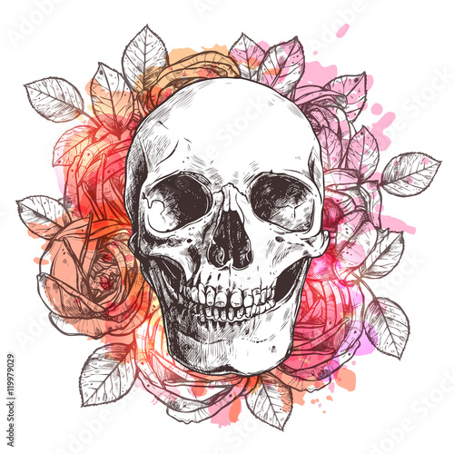 Foto auf AluDibond Aquarell Schädel Skull And Flowers. Sketch With Watercolor Effect