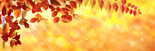 Photo sur Aluminium Orange Herbst 134