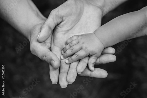 Fotografía  Three hands of the same family - father, mother and baby stay together