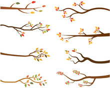 Autumn Set Of Tree Branch Silh...