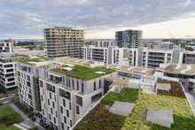 View Of Green Roof On Modern B...