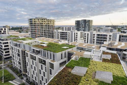 Fotografie, Obraz  View of green roof on modern buildings in Sydney, Australia