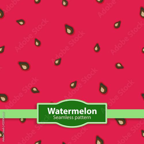 Obraz na plátně Watermelon texture. Seamless background. Vector illustration.