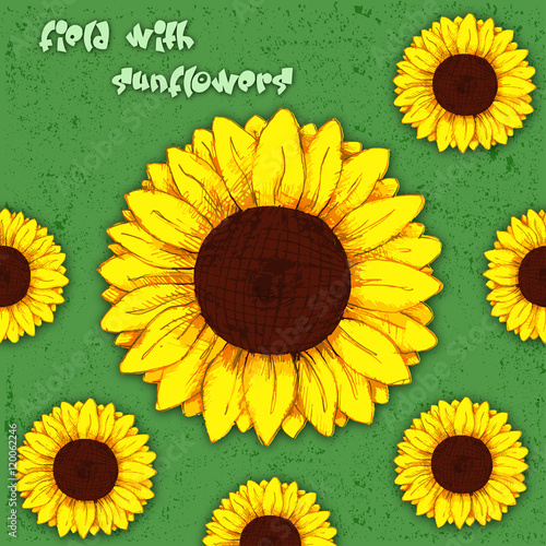 Field With Sunflowers Sunflower Flower Pencil Drawing Color Vector Buy This Stock Vector And Explore Similar Vectors At Adobe Stock Adobe Stock