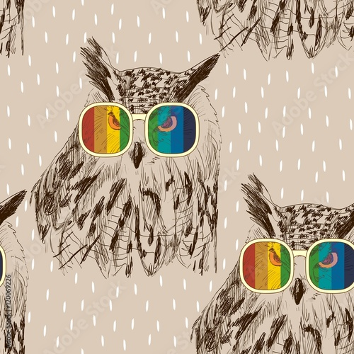 plakat Vector sketch of owls with glasses. Retro illustration