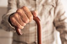 Old Man Hand Holding Walking Stick