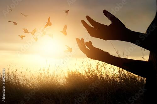Foto En Lienzo - Woman praying and free bird enjoying nature on sunset background