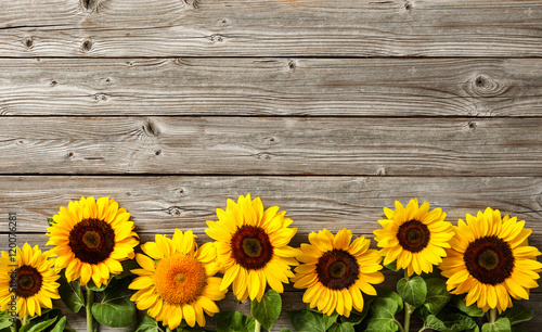 Fotoposter Bloemenwinkel sunflowers on wooden board