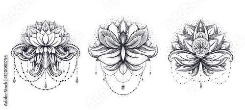 Photographie  Vector ornamental Lotus set