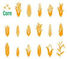 Vector Set Of Icons And Logos With Corn On A White Background.