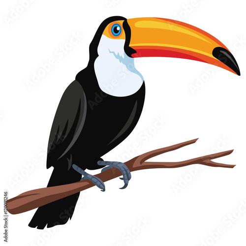 In de dag Toekan Toucan Bird Vector Flat Design