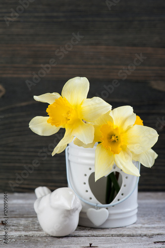 Garden Poster Narcissus Spring flowers in vase on wooden table