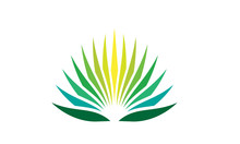 Agave Plant Logo
