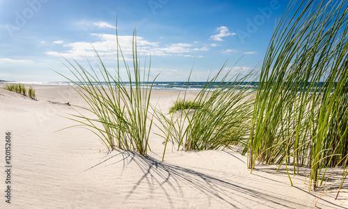 Foto auf Gartenposter Strand Mrzeżyno, plaża