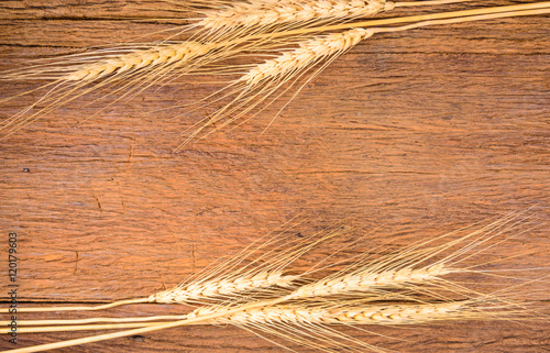 Barley grain on wooden table