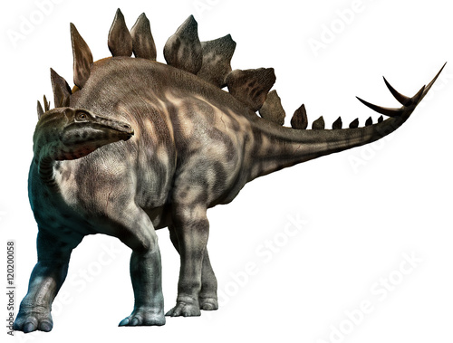 Photo  Stegosaurus