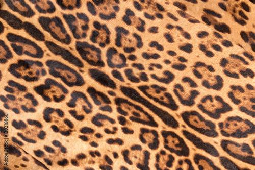 Poster Leopard Faux leopard fur