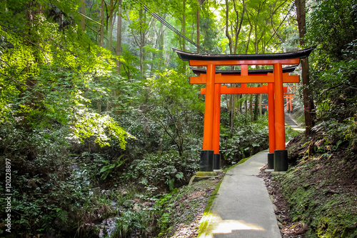 Torii gates in Fushimi Inari Shrine - Kyoto, Japan