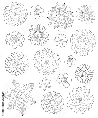 Outline picture of different flowers