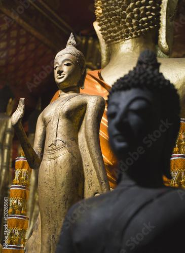 Buddha statues Wat Xieng Thong  Luang Prabang. Laos. Poster
