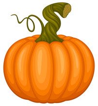 Vector Illustration Of An Orange Pumpkin With A Twisted Green Stem.