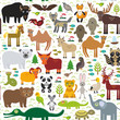 seamless pattern bison bat fox wolf elk horse cock camel partridge seal Walrus goats Polar bear Eagle bull raccoon snake sheep panda leopard Brown bear deer gannet Crocodile turtle elephant. Vector