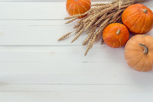 Background With Pumpkins And Ears Of Wheat On A White Wooden Boa