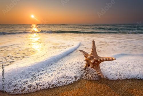 sea star starfish on beach, blue sea and sunrise time. Canvas Print