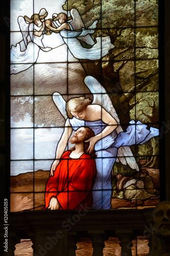 Fotografija The agony of Jesus Christ in the Olive mountain (Getsemani garden