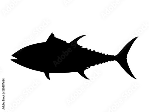 bluefin tuna silhouette vector illustration buy this stock