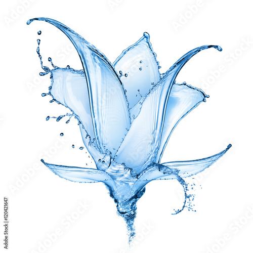 Poster de jardin Nénuphars flower made of water splashes