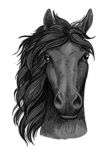 Black Raven Horse Full Face Artistic Portrait