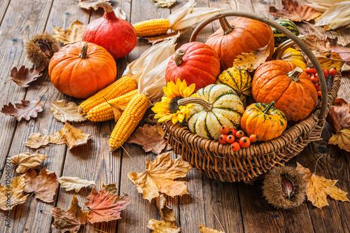jesien-martwa-natura-z-dyni-corncobs-i-lisci