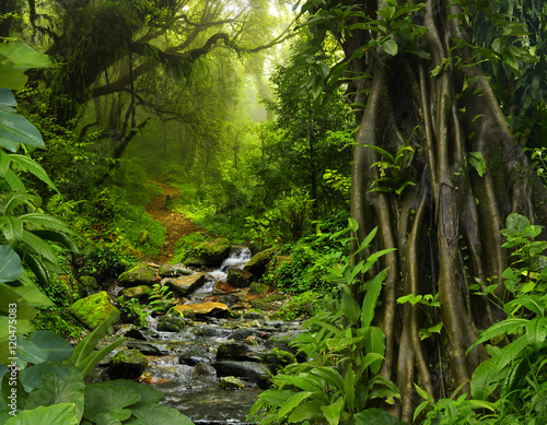 tajlandia-dzungla-z-rzeka