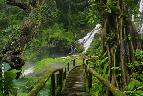 Photo  Thailand jungle with waterfalls
