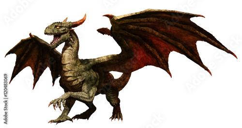 Green dragon Tablou Canvas