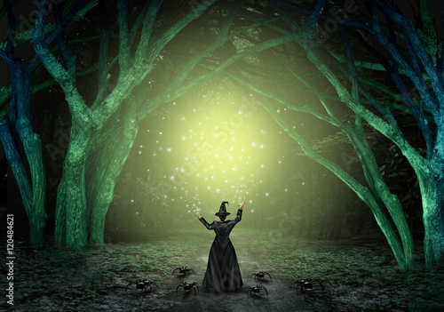 Fotografie, Obraz  Magical Witch Background