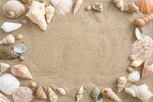 Collection Of Mussels In The Sand With Copyspace In The Center