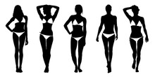 Bikini Silhouettes